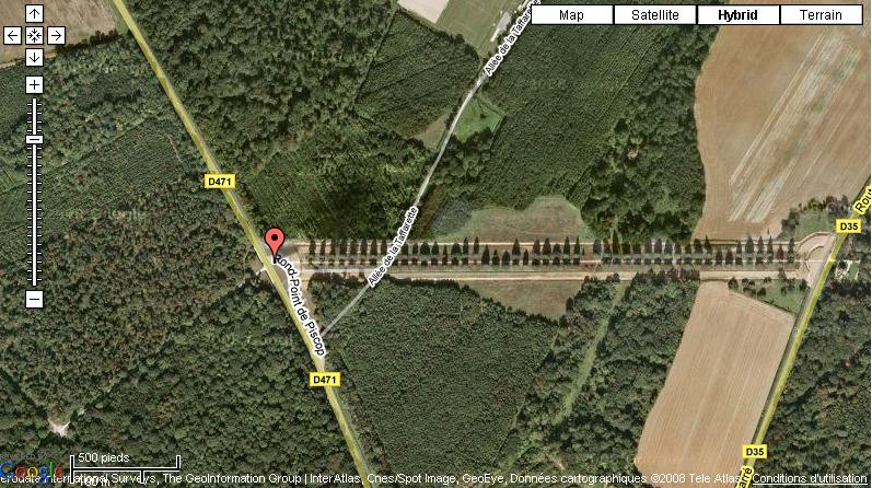 Forêt d'armainvilliers (seine et marne)